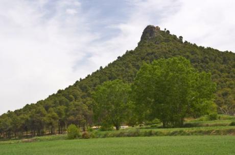 Nature reserve in Sierra de Mariola