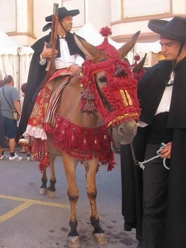 Festividad de San Antonio Abad. Recua arriera de L'Alcora