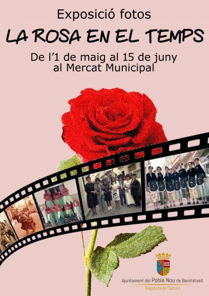 """Exposición fotos """"La Rosa en el temps"""""""