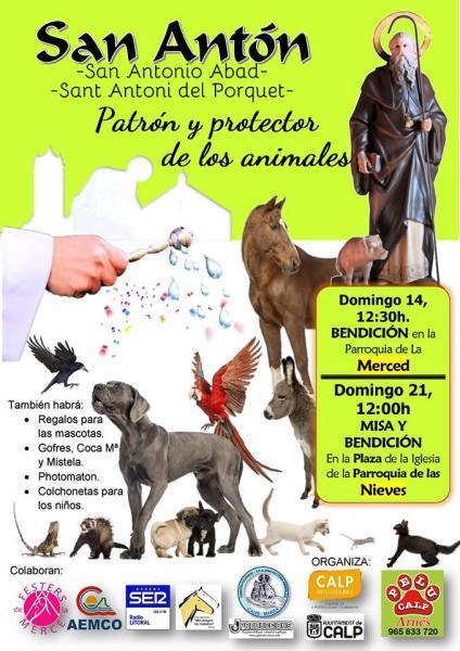 Bendición de los animales, San Antonio Abad en Calpe