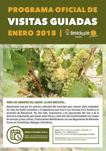 """Programa Oficial Visitas Guiadas: """"La uva moscatel"""""""