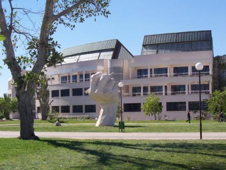 El Bosque Ilustrado de la Universidad de Alicante
