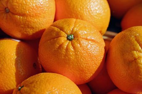VI Concours Gastronomique de l'Orange de Sagunto