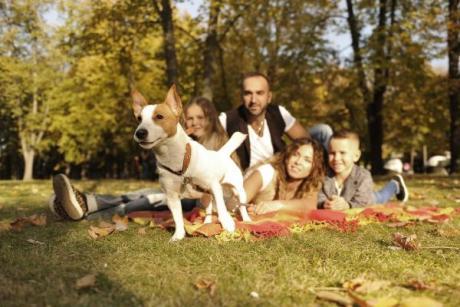 Llega el primer gran festival de familias con mascotas