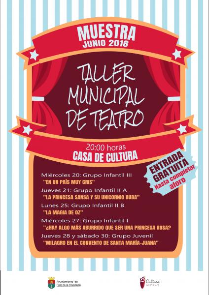 """Muestra del Taller Municipal de Teatro: """"En un país muy gris"""" en Pilar de la Horadada 2018"""