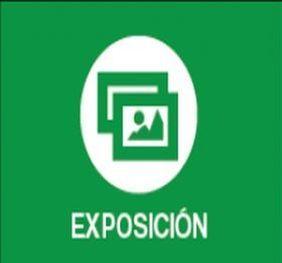 Exposiciones Noviembre 2018