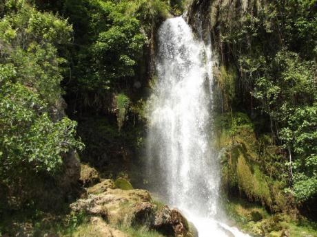 Lernen Sie den Canal de Navarrés mit verschiedenen ethnobotanischen Wanderwegen kennen