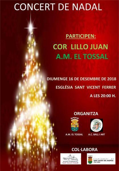 Concierto de Navidad en San Vicente del Raspeig 2018