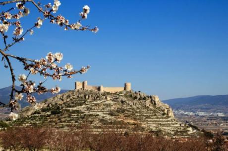 Enric Valor en Castalla: descubre su legado en la localidad