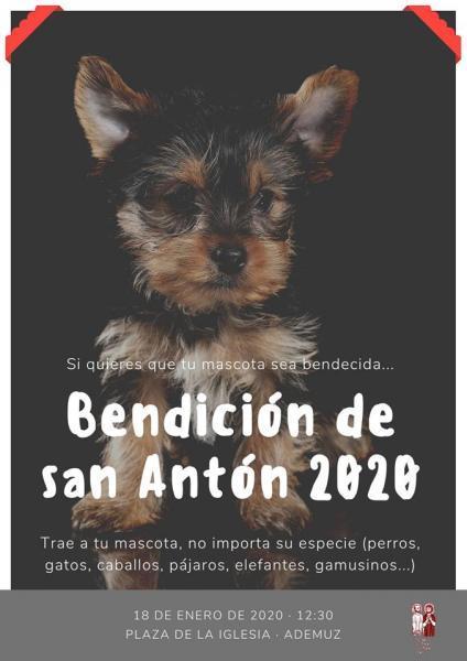 Bendición de San Antón 2020