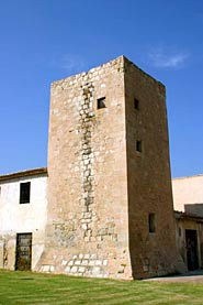 The Sarrió Tower