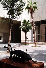 Museu Valencià de la Il.lustració i la Modernitat (MUVIM)