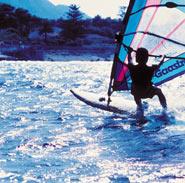 Oliva Surf
