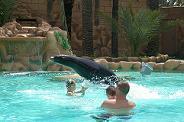 Rio Safari Elche zoo park