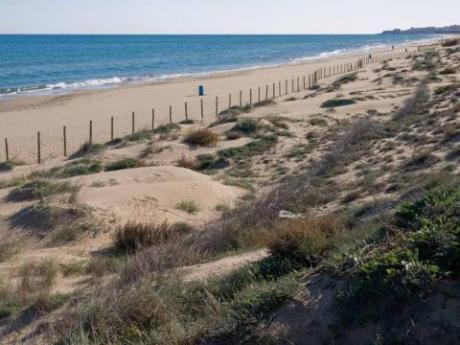 Playa El Moncayo / Moncaio