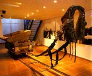 Museu de la Sal