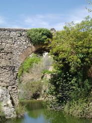 Puente Real y Concegil