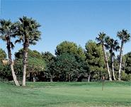 El Plantío Golf