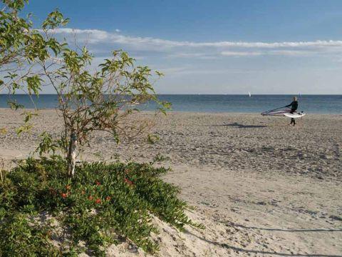 Llisa Beach