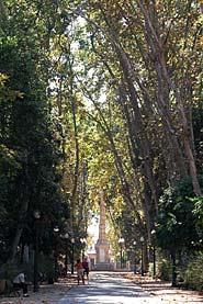 Parc Ribalta