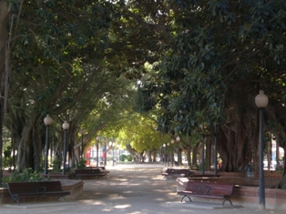 Parc de Canalejas