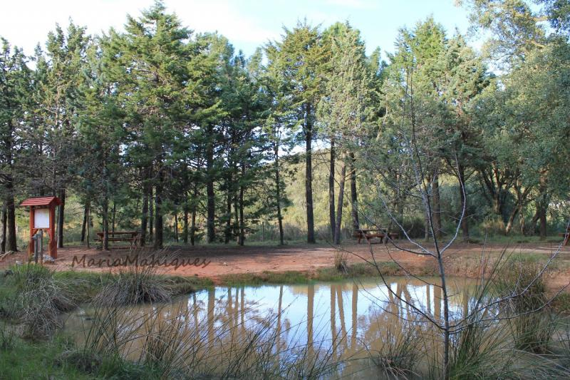 Naturschutzgebiet El Surar