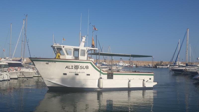 Ali Sub
