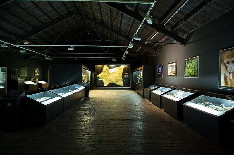 Museu de la Biodiversitat